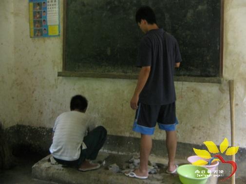 壁纸 大熊猫 动物 505_378